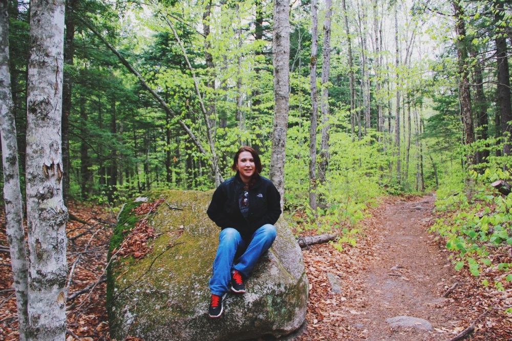 Exploring In New Hampshires Forests