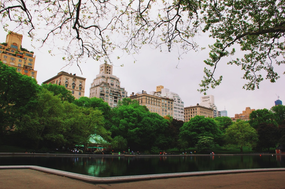 Upper West Side Views Central Park