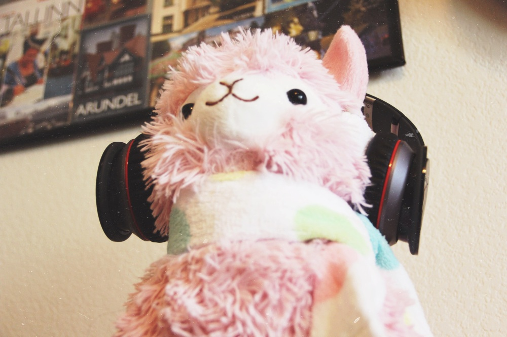 Steve, the Pink Alpaca, wearing my headphones.