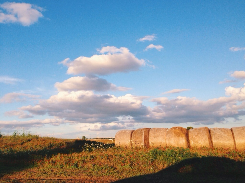 Hay bales, northern texas
