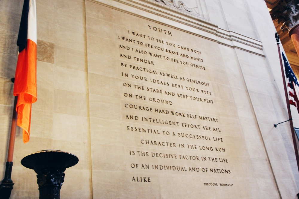 Youth Quote Teddy Roosevelt