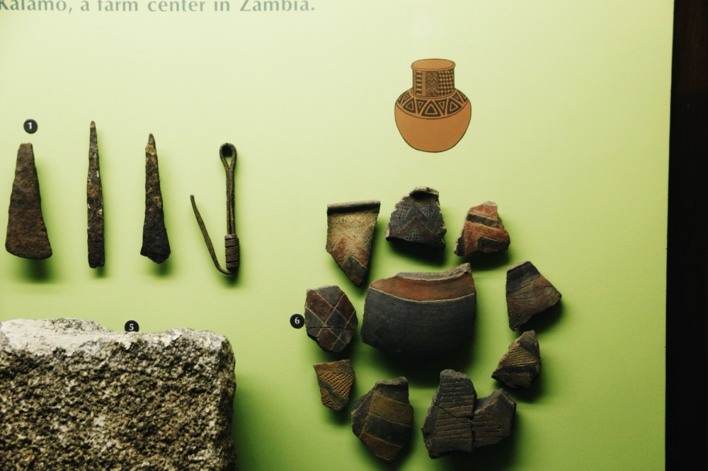 Pottery Displays in the Natural History Musueum