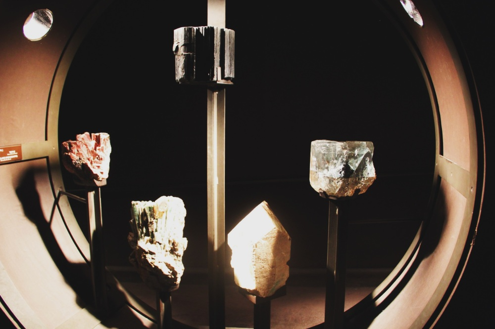 These lovely things in the Museum of Natural History