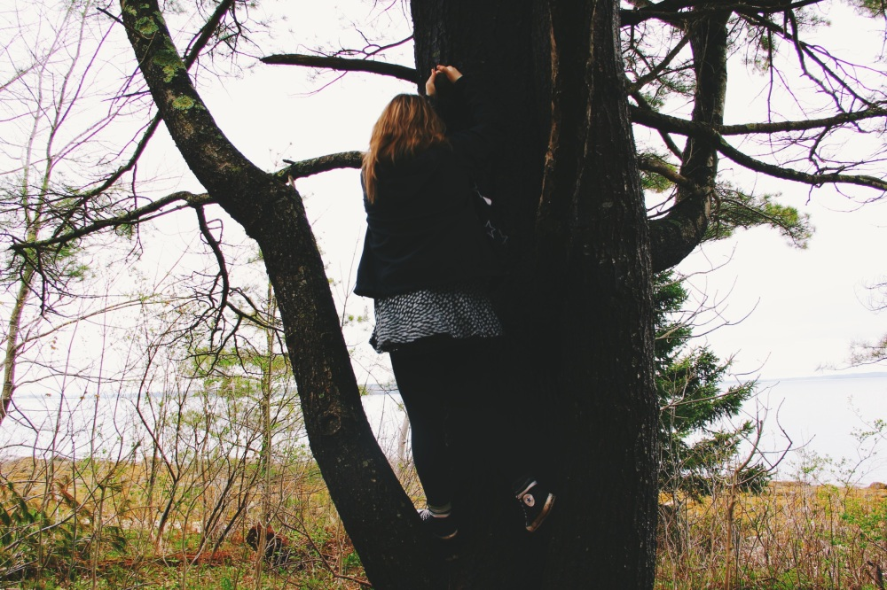 Kat Climbs a Tree, in A dress no less