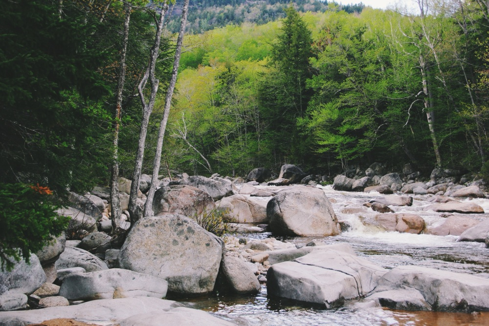 Exploring in New Hampshires rivers