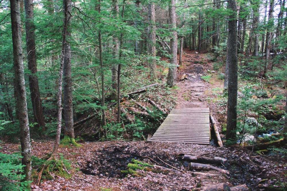 A little bridge, in the woods, New Hampshire
