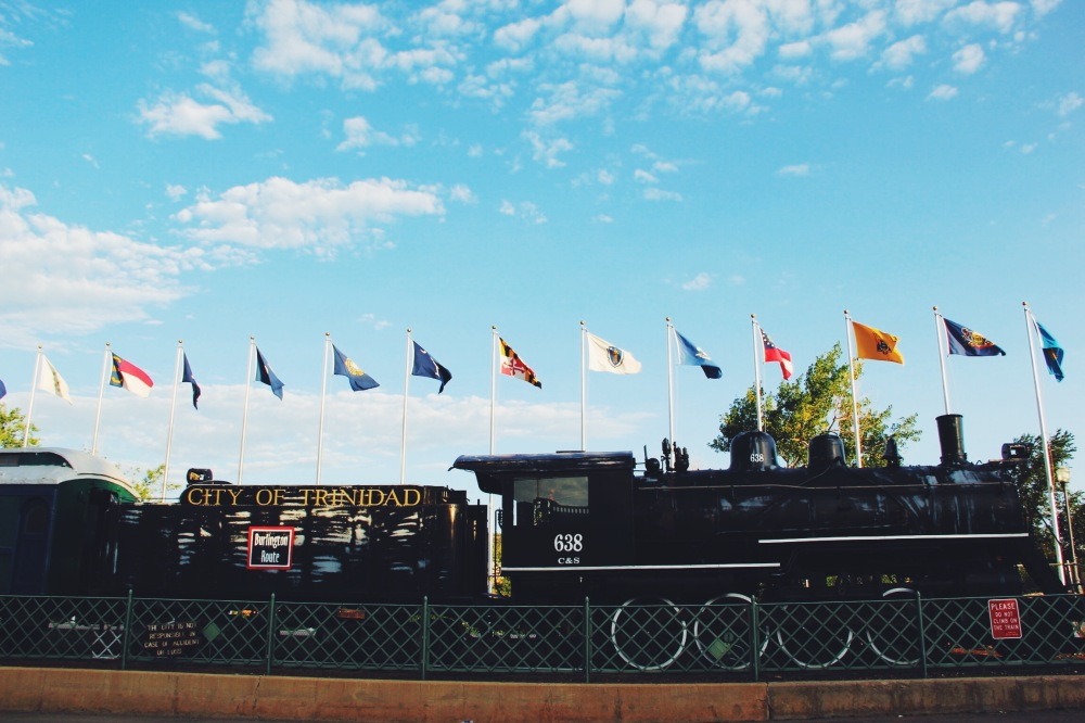 These flags and trains