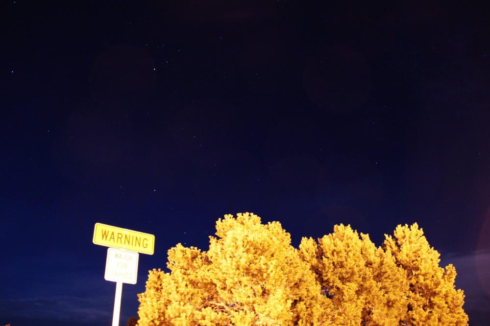 Night sky at the reststop