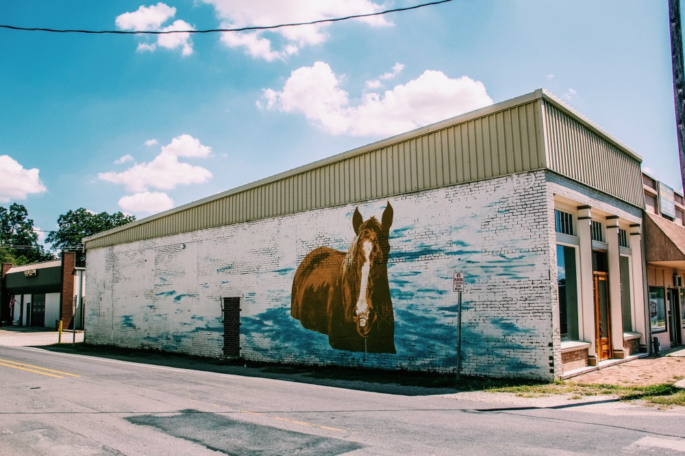 A horse on this wall