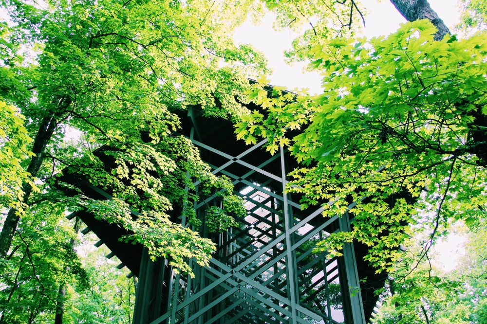 Thorncrown Chapel in the Green