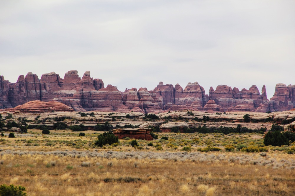 The Needles at Canyonlands National Park