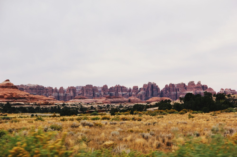 The Needles at Canyonlands