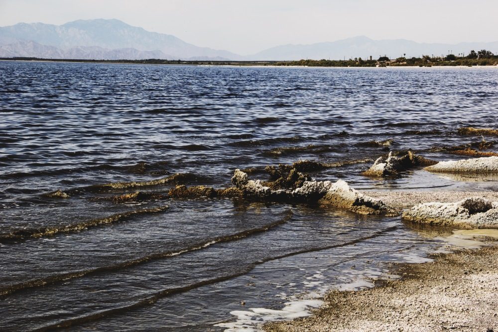 the waves at Salton Sea, California